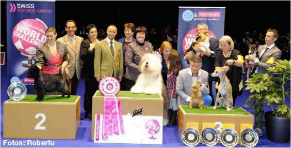 EUKANUBA WORLD CHALLENGE 2014