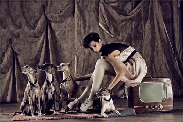 UNSERE WHIPPETS EINMAL GANZ ANDERS - im Fotoshooting von La Donna Open Mag http://www.openmag.ch  super in Szene gesetzt von Fotografin Nicole Bökhaus  http://www.frozengrace.com  und noch ein Link, fotofrafiert von Nicole Bökhaus http://www.loungemag.ch/fashion/la-donna/